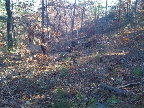 Mountain Hunting Land : Clayton : Pushmataha County : Oklahoma