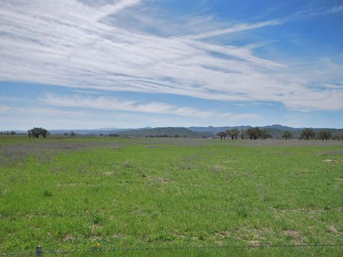 Usable 40 Acre Parcel : Lockwood : Monterey County : California