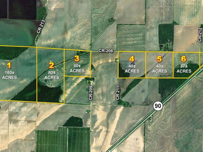 403 Acres Clay County Farm Land : Knobel : Clay County : Arkansas