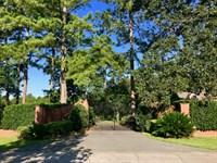 263 Acres In Attapulgus : Attapulgus : Decatur County : Georgia