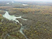 181.12 Acre Hunting Property Adjac : Clarendon : Monroe County : Arkansas
