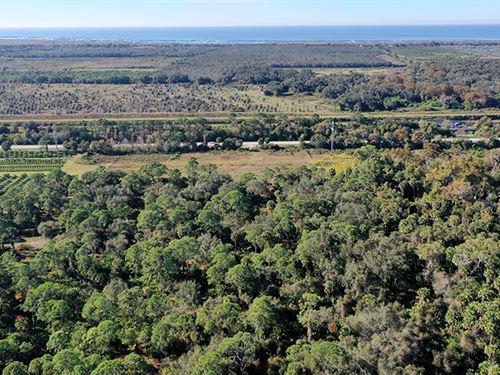 Okeechobee 28 Acres : Okeechobee : Florida
