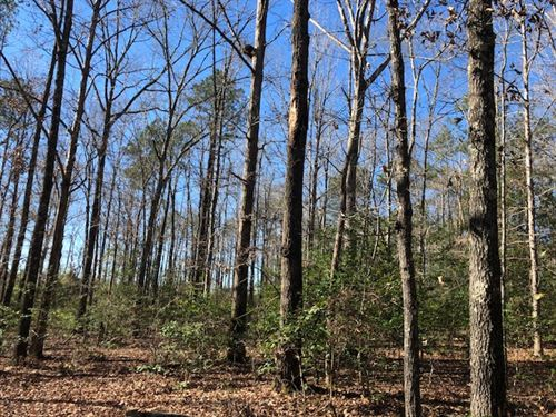 Hunting Tract Or Homesite : Dry Branch : Twiggs County : Georgia