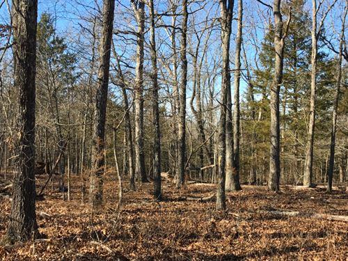 6 Acres On Bull Shoals Lake : Cedarcreek : Taney County : Missouri