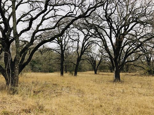 15 Acres With Pond : Rockdale : Milam County : Texas