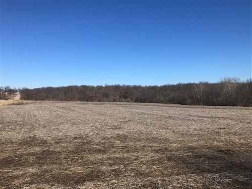 74 M/L Lafayette County, MO Offeri : Odessa : Lafayette County : Missouri