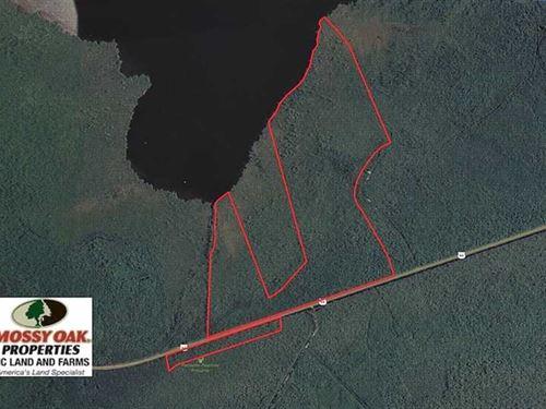 Reduced, 171 Acre Bear Sanctu : Columbia : Tyrrell County : North Carolina