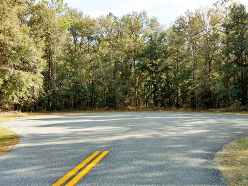 Beautiful 5 Acre Lot Lake City : Lake City : Columbia County : Florida