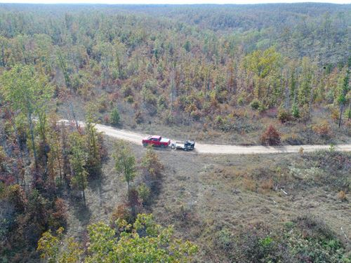 10 Acres On Conservation Land : Eminence : Shannon County : Missouri