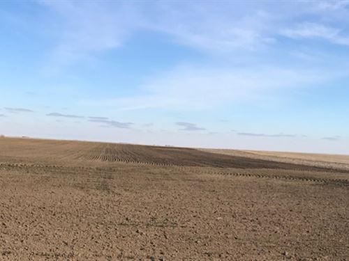 Deuel County Dryland : Chappell : Deuel County : Nebraska