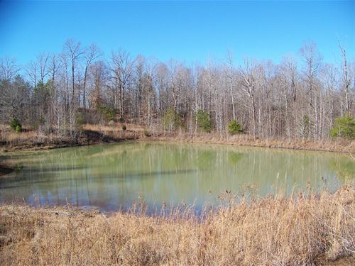 Land TN River Existing Basement : Morris Chapel : Hardin County : Tennessee