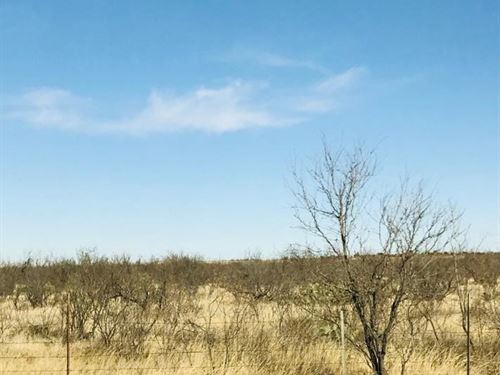 Land For Sale : Big Spring : Glasscock County : Texas