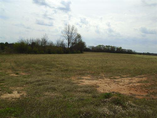 Marlboro County Timberland : Bennettsville : Marlboro County : South Carolina