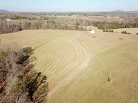 Absolute Farmland Auction : Rustburg : Campbell County : Virginia