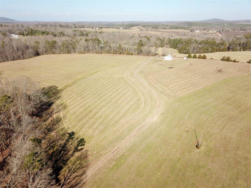 Absolute Farmland Auction : Rustburg : Campbell County : Virginia