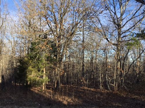 Wooded Land In Southern Missouri : Elk Creek : Texas County : Missouri