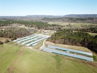 Birdhouse Way Farm : Rocky Face : Whitfield County : Georgia