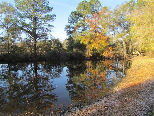 Plowden 1 & 2 Tracts : Sumter : South Carolina