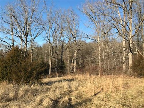 Nice Little 6 Acre Hunting Tract : Stover : Benton County : Missouri
