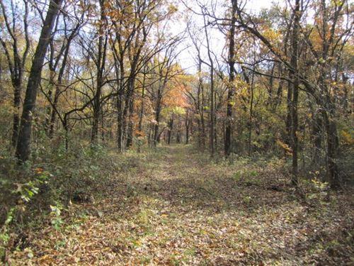 Managed Hunting Recreational : Brunswick : Chariton County : Missouri