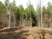 Land TN Creek, Hunting, Owner : Savannah : Hardin County : Tennessee