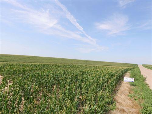 Wallace Farms Auction Parcel 2 : Wallace : Perkins County : Nebraska