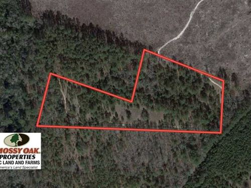 9.5 Acres of Residential Land : Laurinburg : Scotland County : North Carolina