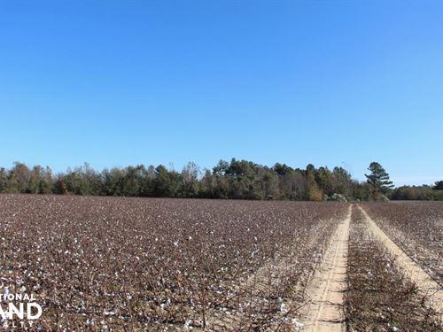 Scott's Place Farm : Waynesboro : Burke County : Georgia