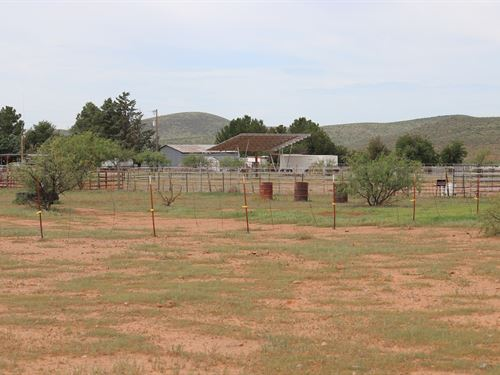 Country Home Ranch 250 Acres : Willcox : Cochise County : Arizona