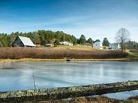Homes Farm Acreage, Carroll County : Dugspur : Carroll County : Virginia