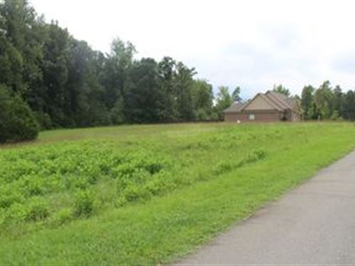Auction, 7 Large Lots In Galewood : Liberty : Randolph County : North Carolina