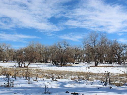 Smialek Creek : Bennett : Adams County : Colorado