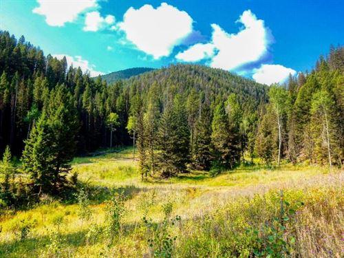 Strike It Rich : Philipsburg : Granite County : Montana