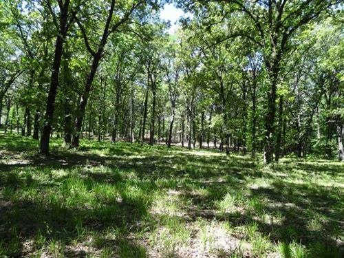 26.89 Surveyed Acres Near Bass Pro : Alexander : Pulaski County : Arkansas