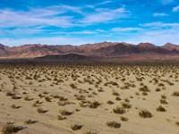 Vegas Pitstop : Amboy : San Bernardino County : California