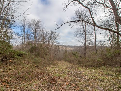 Blain Highway, 117 Acres : Chillicothe : Ross County : Ohio