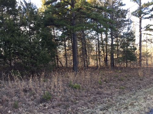 Secluded, Wooded Land In The Ozarks : Hartshorn : Texas County : Missouri