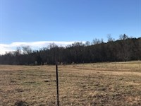 126 Acre Working Cattle Farm : Union : Union County : South Carolina