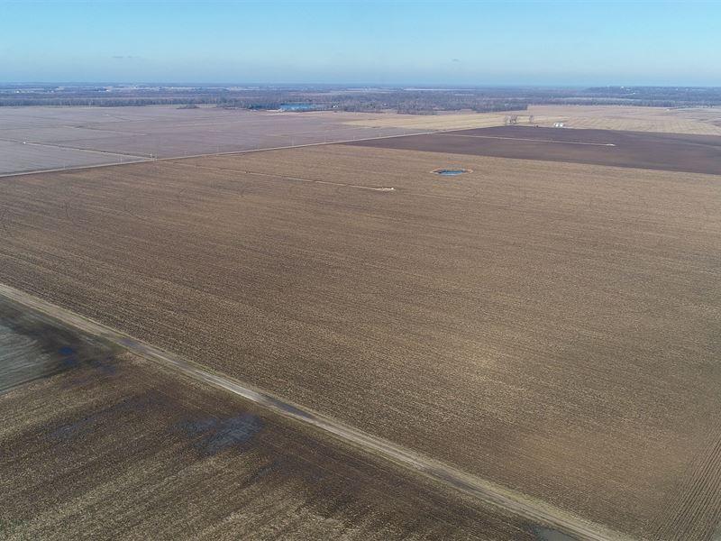 Land Auction In Sullivan Co, In : Sullivan : Sullivan County : Indiana