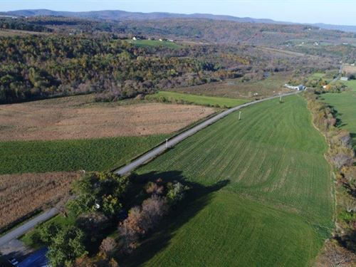 Catskills Farm Land Liquidation : Sharon Springs : Schoharie County : New York