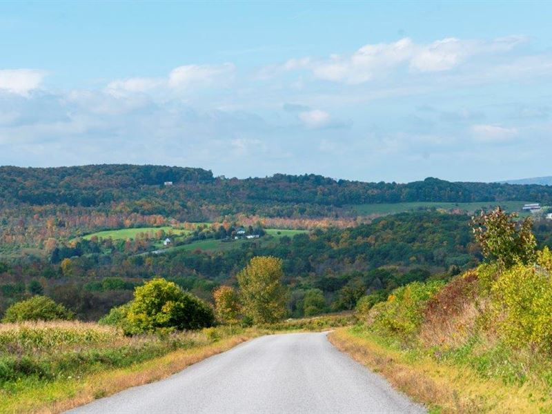 Farm Land Liquidation 3 Hours Nyc : Sharon Springs : Schoharie County : New York