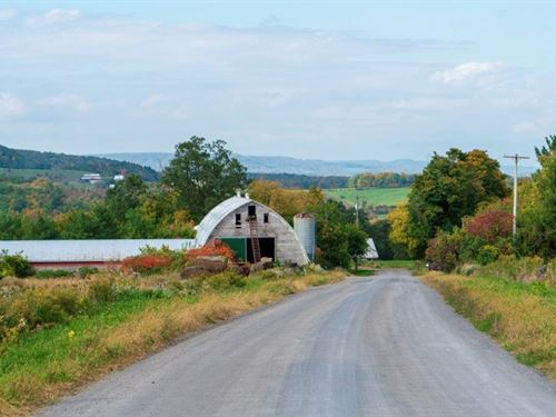Your Mini Farm Awaits : Sharon Springs : Schoharie County : New York