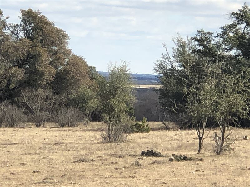 125+ Wooded & Hilly Acres : Stephenville : Erath County : Texas