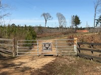 250 Acres Wilkinson County, Ms, Tur : Gloster : Wilkinson County : Mississippi