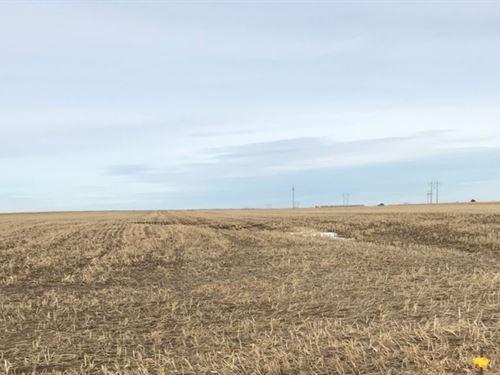 Frontier County Range And Drycrop : Maywood : Frontier County : Nebraska