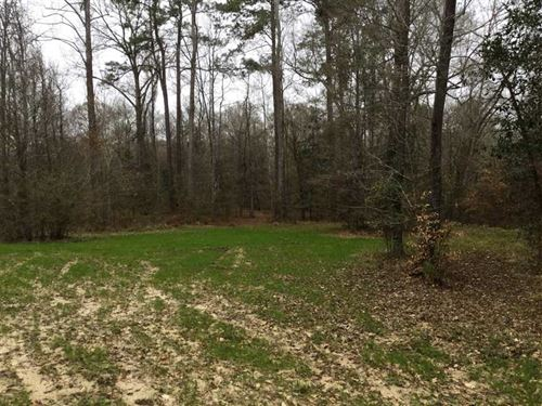 Cheerful Valley Lot 1A Tract, West : Saint Francisville : West Feliciana Parish : Louisiana