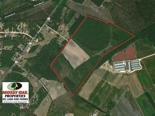 Under Contract, 113 Acres of Timb : Raeford : Hoke County : North Carolina