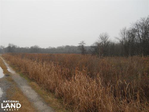 Delta Ag/Development : Clarksdale : Coahoma County : Mississippi