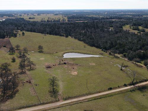 29.37 Acres, Cr 419 : Lexington : Lee County : Texas