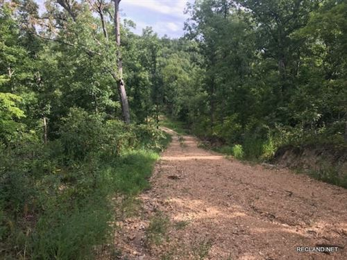 157 Ac, Hunting Tract : Laurie : Morgan County : Missouri